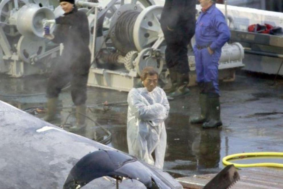 Sea Shepherd say the crew took photos and posed with the whale.