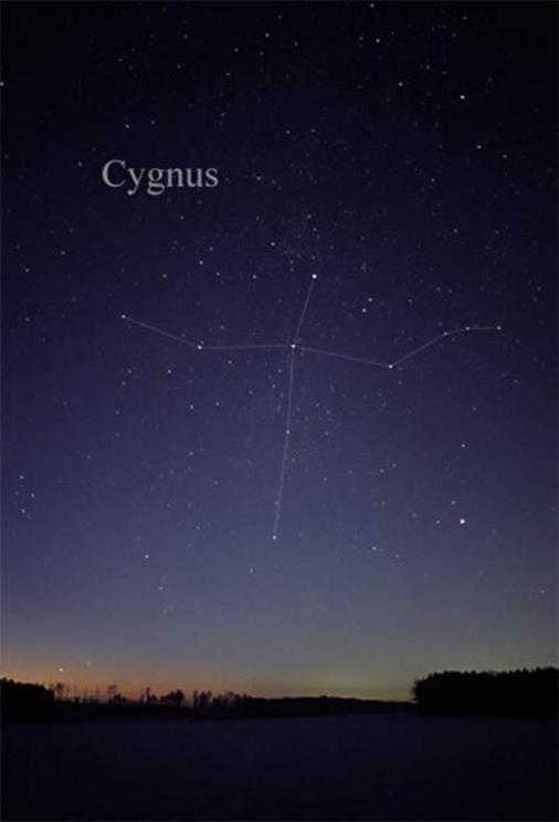The constellation Cygnus as it can be seen by the naked eye, with the Northern Cross in the middle.